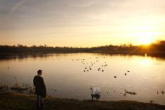 Frankfield sunset