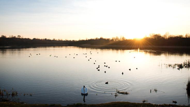 Frankfield Loch